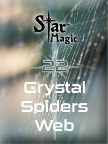 Med 22 crystal spiders web