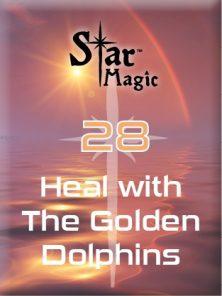 Med 28 golden dolphins (1)