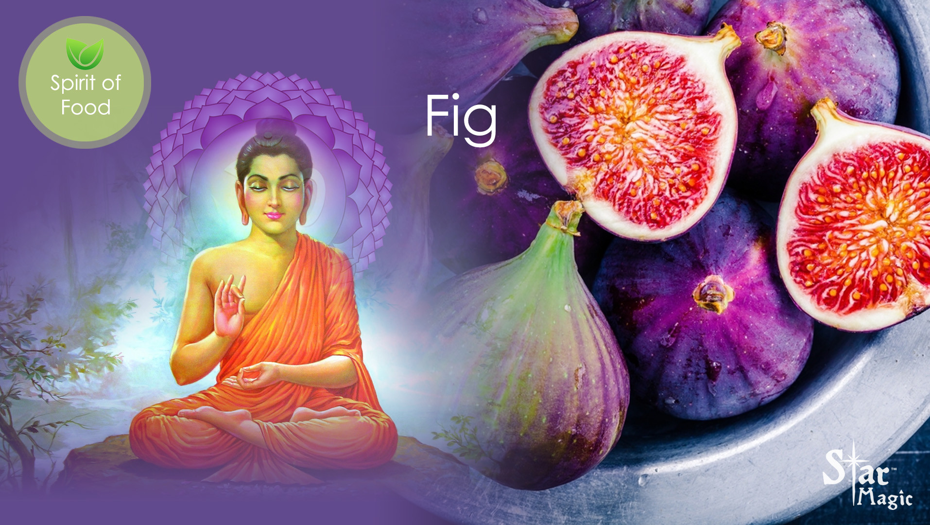 Spirit of food - Fig
