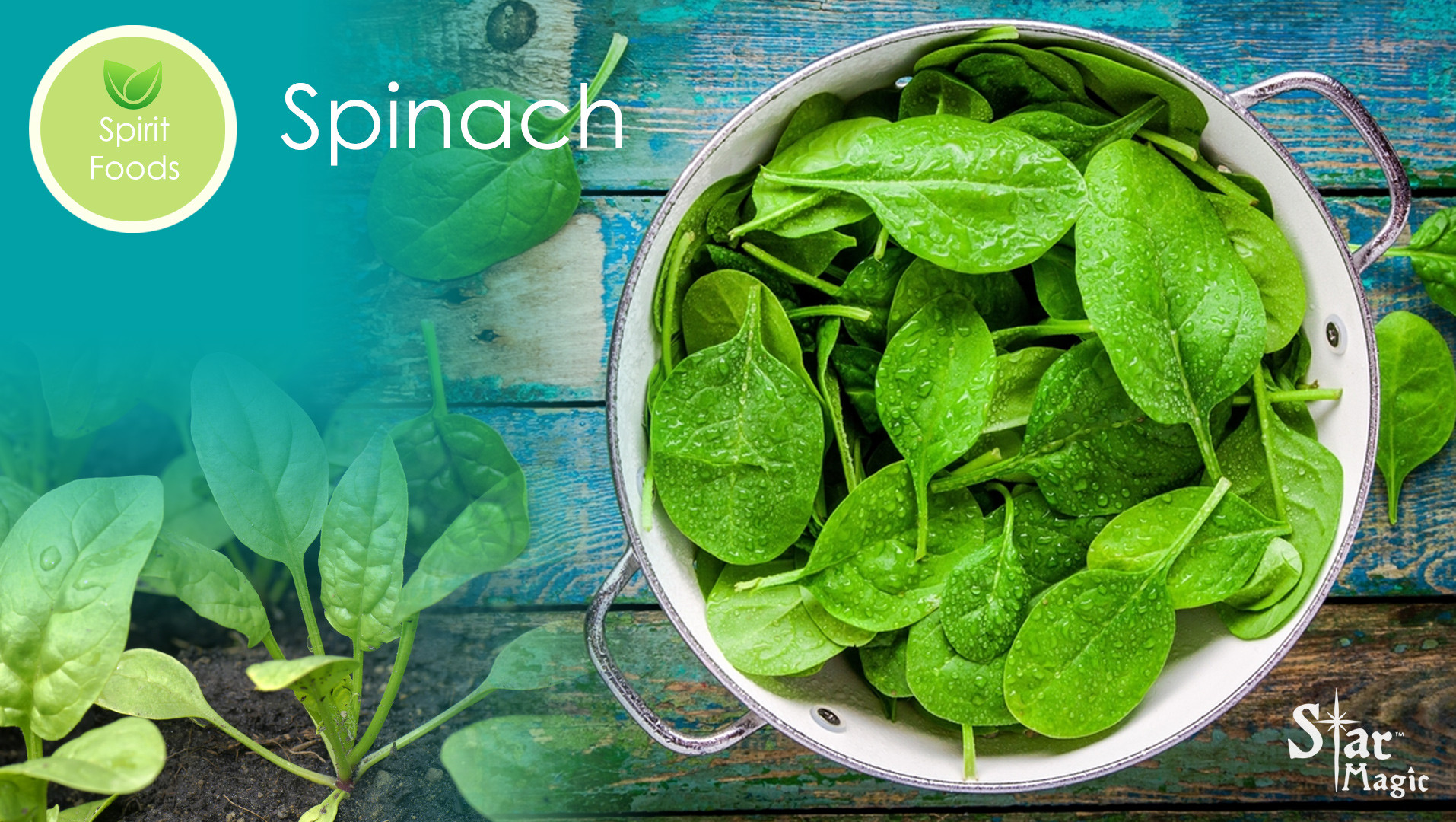 Spirit Food – Spinach