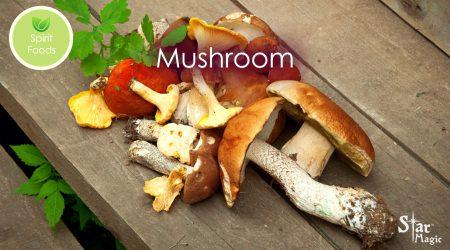 spirit food mushroom