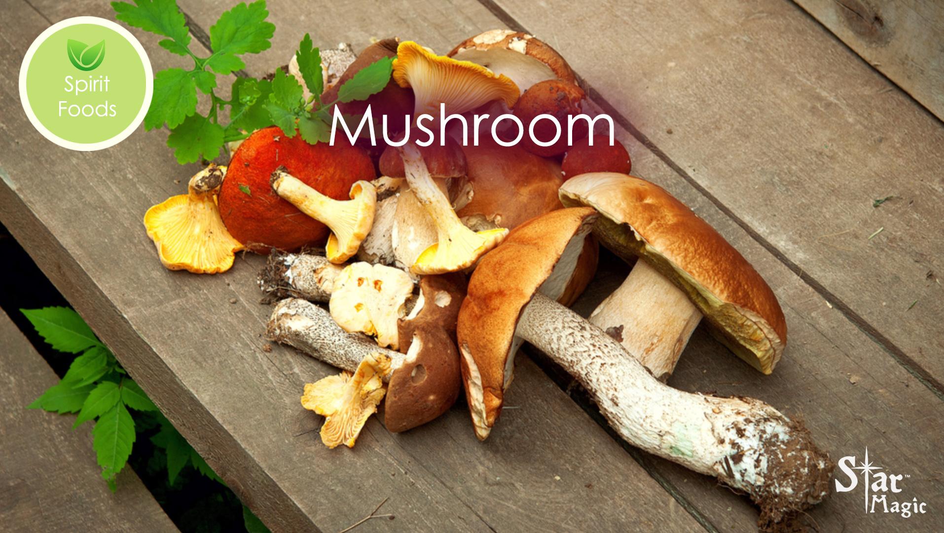 Spirit Food – Mushroom