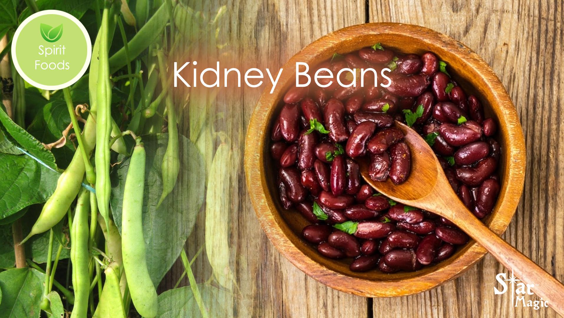 Spirit Food Kidney Beans