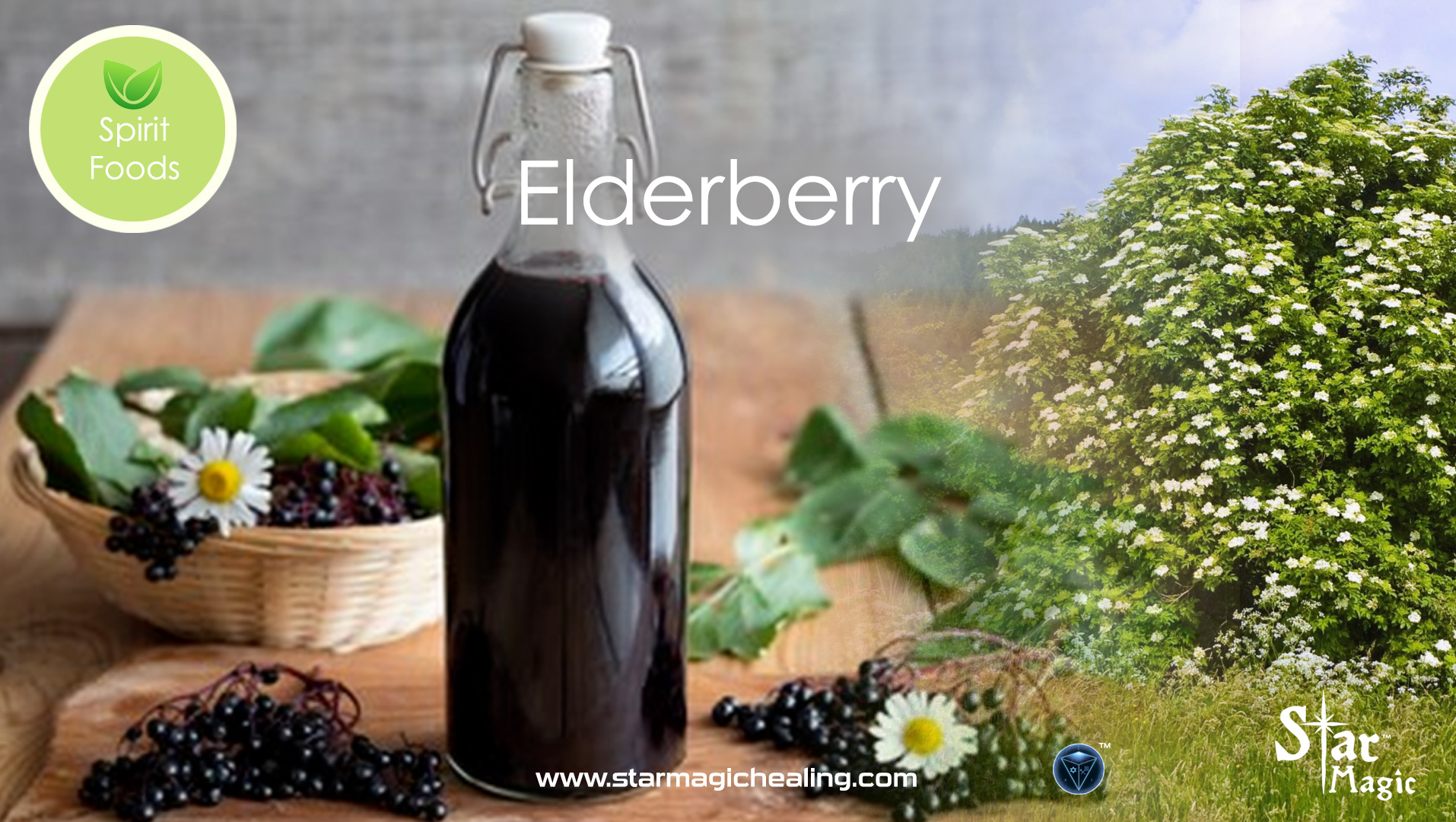 Spirit Food – Elderberry